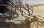 Dünenwäldchen-Marokko-Algadir Im-Gegenlicht-86-x-68-cm-Tusche-Punkttechnik-und-Aquarell
