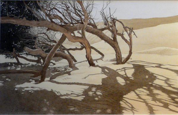Dünenwäldchen Marokko, Algadir,Im Gegenlicht 86 x 68 cm, Tusche-Punkttechnik und Aquarell